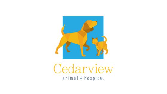 cedarview valley med veterinary lighting equipment